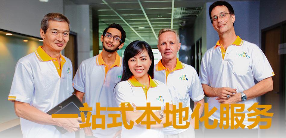 Team members Translation in Malaysia VEQTA